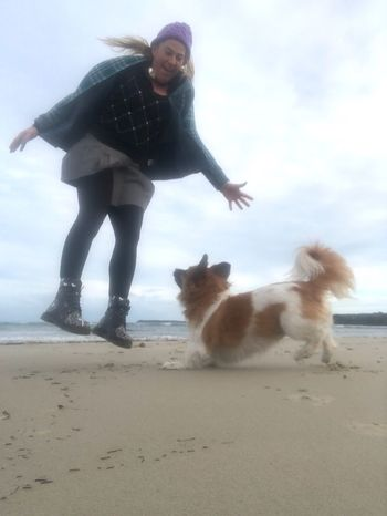 Hooray hooray it's a holiday Funtimes Jumping For Joy Happy Pets Domestic Animals Domestic Land Mammal One Animal Beach Dog Canine Full Length Real People Outdoors Pet Owner Sky Sea Sand
