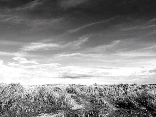 Blackandwhite Dunes Beach Beachphotography Sky Tranquility