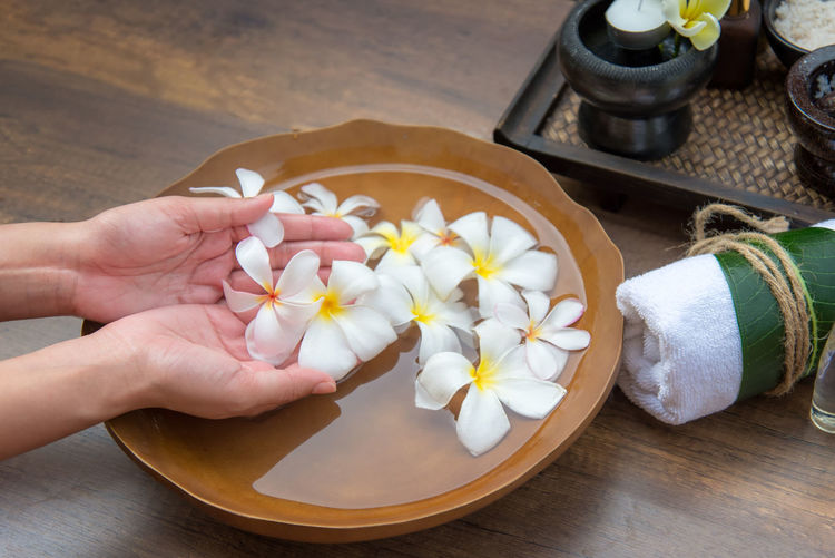 High angle view of hand holding white flowering plants on table