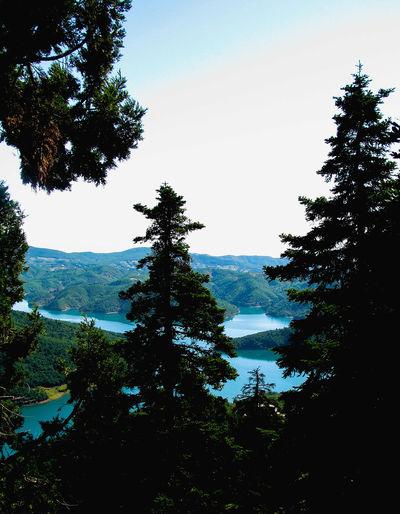 mountain lake Plastira Lake Greece Lake Mountain Trees Trees And Sky Blue Tree Water Silhouette Sky Tranquil Scene Tranquility Treetop The Great Outdoors - 2018 EyeEm Awards The Traveler - 2018 EyeEm Awards Scenics Idyllic
