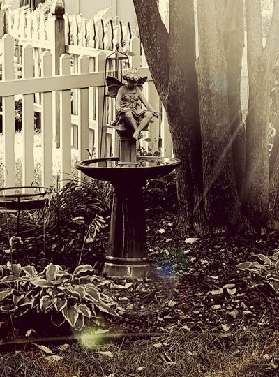 Angels Vintage Neutral Tones Fairy Fairy Landscaping Tans Birdbath WallpaperForMobile Tree Trunk