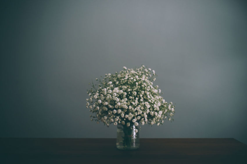 Flower Arrangement Garden Flowers Babybreath Close-up Day Flowers Grey Wall Minimalism Nature No People Woodtable