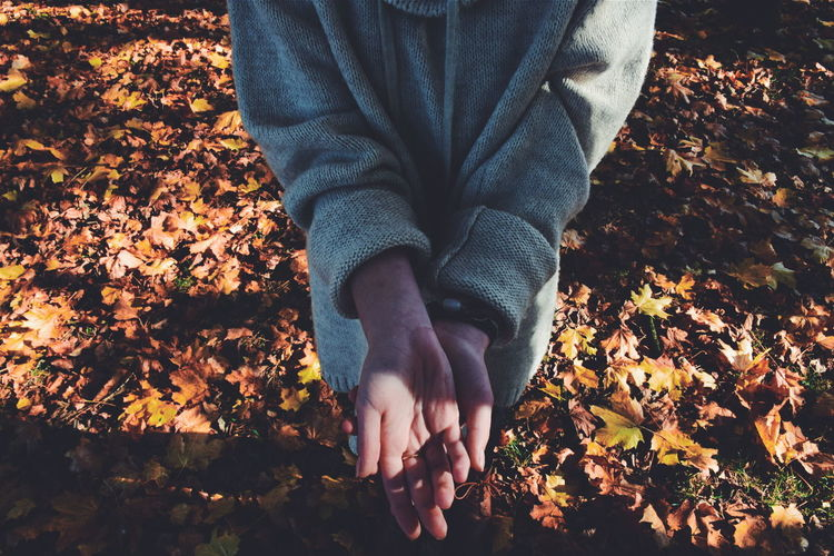 Low Section Of Woman With Cupped Hands Standing On Autumn Leaves