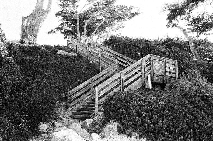 Architecture Wood - Material Carmel California NATURA Classica Ilford Delta 3200 Koduckgirl Grainy Photo Blknwht Film No People