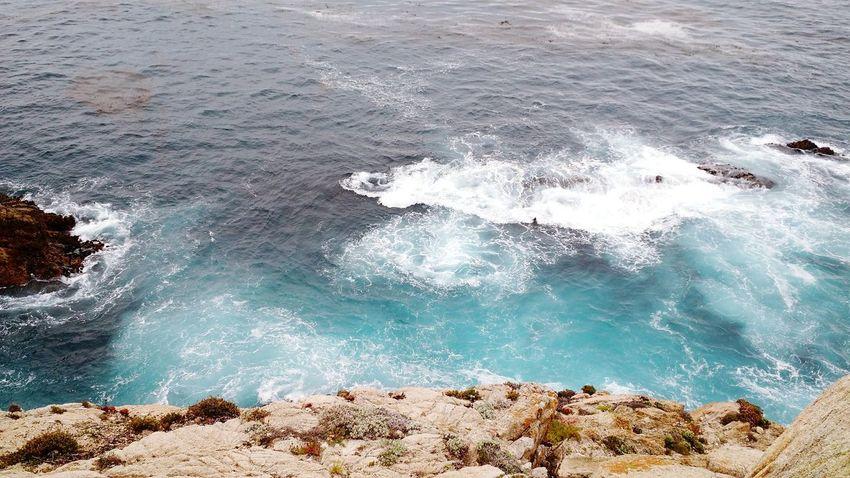 Point lobos Point Lobos Coast Ocean