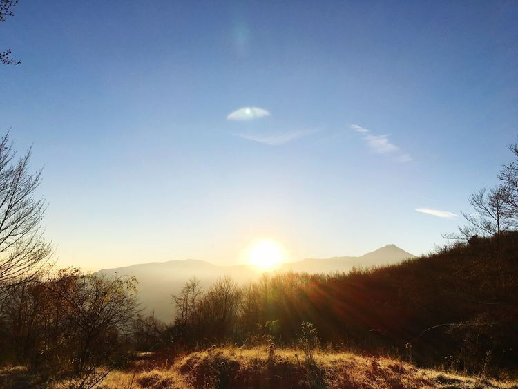 Sunrise EyeEmNewHere Sky Beauty In Nature Tranquility Scenics - Nature Sunlight Tranquil Scene Plant