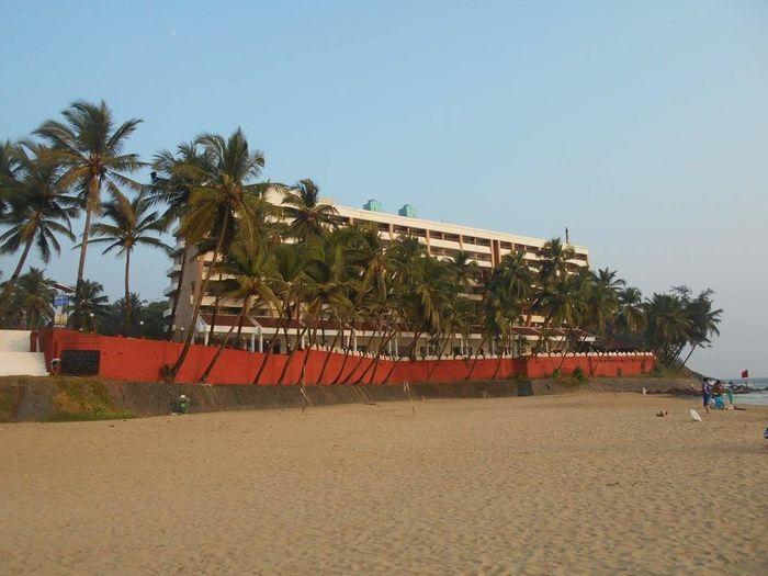 Beachside School Coconut Trees Boatshapedcompound Beach Life