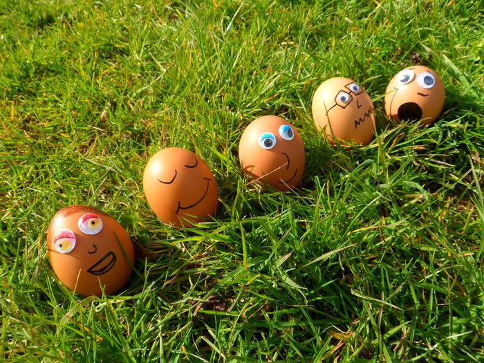 High Angle View Of Easter Eggs With Anthropomorphic Face On Grassy Field
