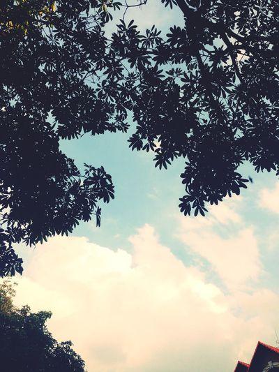 enjoying the weather First Eyeem Photo