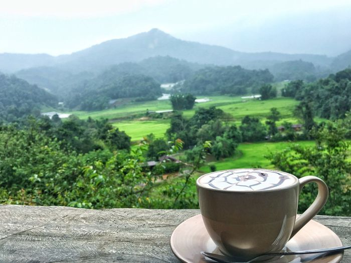 a cup of coffee Drink Coffee - Drink Coffee Cup Refreshment Mountain Food And Drink No People Saucer Mountain Range Freshness Table Day Landscape Nature Scenics Frothy Drink Outdoors Beauty In Nature Tea Crop Tree Delicious Cappuccino Cafés