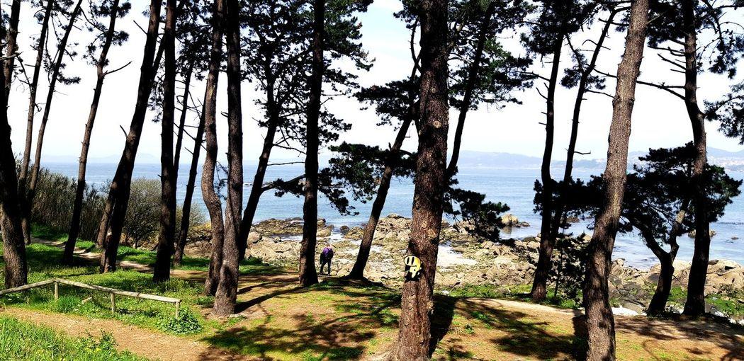 💖 SPAIN España Galicia Vigo 💖☺💖 💕💕💕💕💕💕💕 Theplace  Theplacewhereyoubelong Protection Sky First Eyeem Photo Calm Tranquil Scene Tranquility Countryside Green
