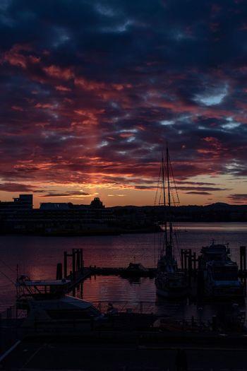 LoJo sunset Sky