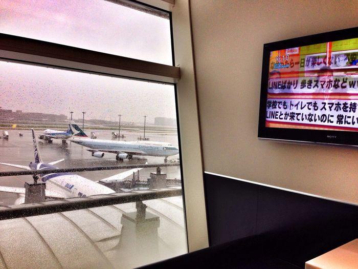 香港へ行くキャセイの飛行機が見える。