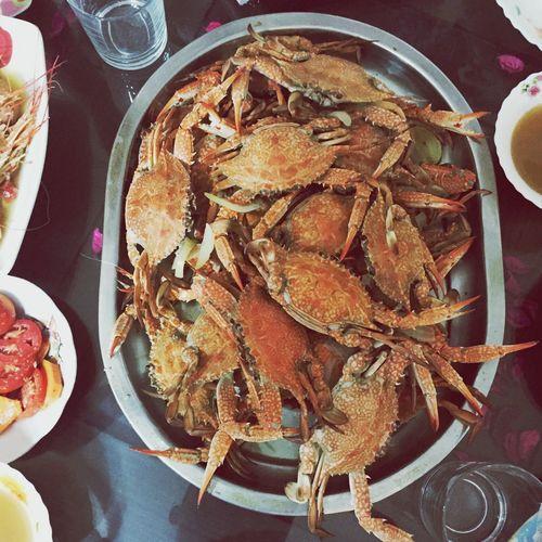 Sea_food Sea Healthy Food Seafood