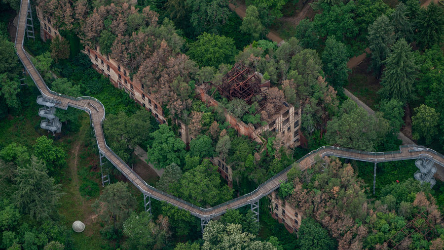 Aerial view of trees by building on mountain