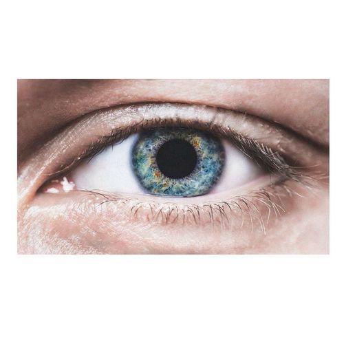 Human Eye Eyesight Human Body Part Close-up Eyeball Eye Iris - Eye Eyelash Adults Only People One Person Eyebrow Young Adult Only Men Day