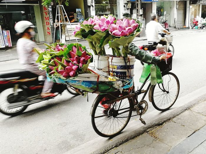 PhonePhotography P9 Huawei Lotus Flower Lotus Bicycle Vietnam Traditional Hat Street Flower Bicycle Land Vehicle City Bouquet Blooming Bunch Of Flowers The Street Photographer - 2018 EyeEm Awards