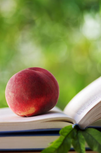 ripe peach on open book. Closeup Book, Peach Close-up Education Food Fruit Green Color Page Table