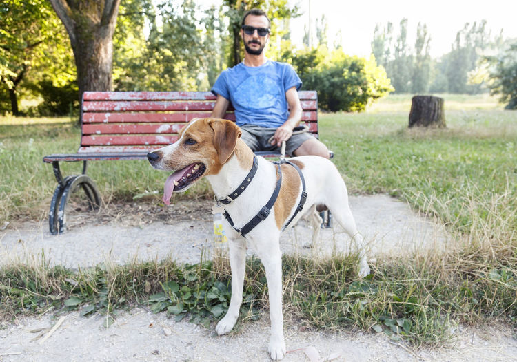 Portrait of man holding dog leash while sitting on bench in park