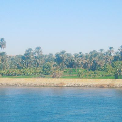 Aswan Aswan, Egypt Beauty In Nature Bluewater Day Egypt Green Nature Landscape Landscape_photography Luxor Nature Nature Photography Nature_collection Nature_perfection Nile Cruise Nile River No People Outdoors Palm Tree River Sky The Nile River Tranquil Scene Upper Egypt  Water