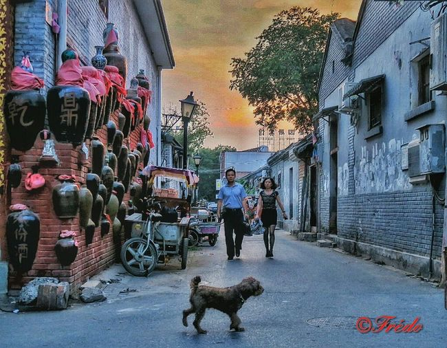 Hutong Life Hutongs Hutong Sunset Hutong Sky Hutong Hutong Street Beijing Beijing, China Evening Streetphoto_color Pékin Fin D'été Streetphotography Streetphoto Street Photography This Is Beijing China Photos Shotoftheday Beijing China Chinese City Life Architecture Street BEIJING北京CHINA中国BEAUTY
