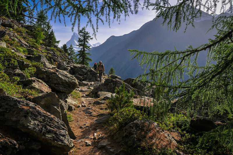 Hiking Matterhorn  Monte Rosa Adventure Alps Beauty In Nature Day Environment Formation Geology Land Landscape Mountain Mountain Peak Mountain Range Nature Non-urban Scene Outdoors Plant Rock Scenics - Nature Sky Trail Tranquil Scene Tree