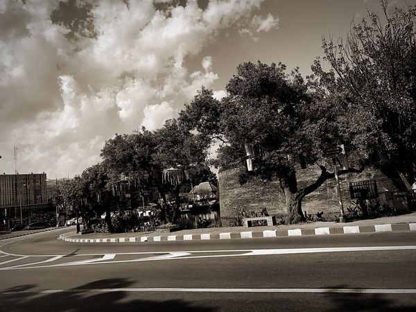 Around City Tree Road Street Car Sky Transportation Growth Outdoors Day Land Vehicle City Cloud - Sky No People Nature Architecture Black Background Black & White Black And White