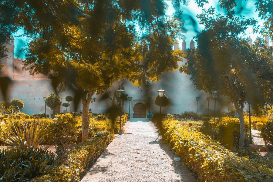 Blur Motion Landscape Landscape_photography Nature Shutterspeed