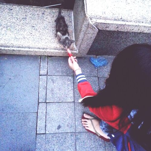 Kitty #BFF