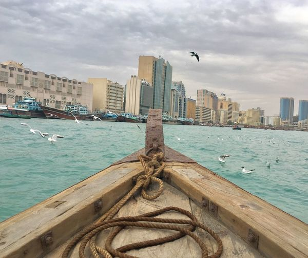 Freedom is doing anything without anyone's permission. Chadventurestories Cityscape Dubai UAE ASIA Abra Old Boat Creek Seagull Water Air Fly Soar Freedom Travel Photography Wanderlust Photooftheday EyeEmNewHere Let's Go. Together.