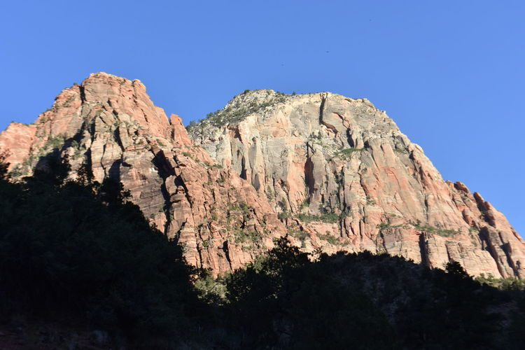 Zion National Park Beauty In Nature Clear Sky Day Eroded Formation Geology High Low Angle View Mountain Mountain Peak Mountain Range Nature No People Outdoors Plant Rock Rock - Object Rock Formation Rocky Mountains Scenics - Nature Sky Solid Tranquil Scene Tranquility