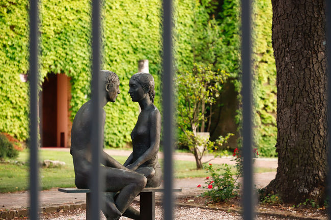 Date Lovers Animal Wildlife Ape Art And Craft Bertinoro Day Emotion Emotional Fence Focus On Foreground Italy Looking Through Mammal Nature No People One Animal Outdoors Plant Primate Representation Sculpture secret garden Sunlight Tree