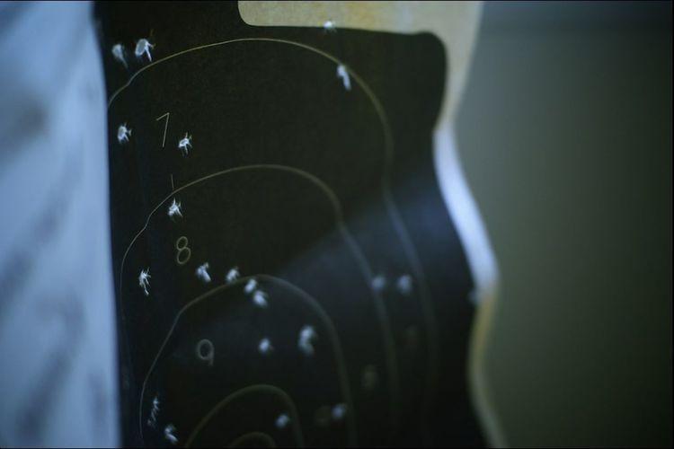 Gun Range
