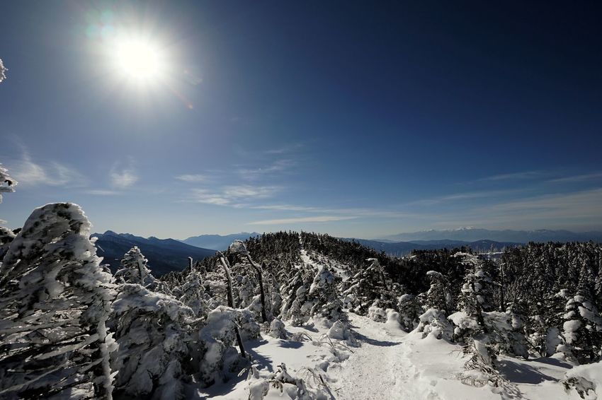 Mountain Peak Trekkinng Mountain Snow Outdoors Winter Cold Temperature Landscape Sky Mountain Range Nature Beauty In Nature