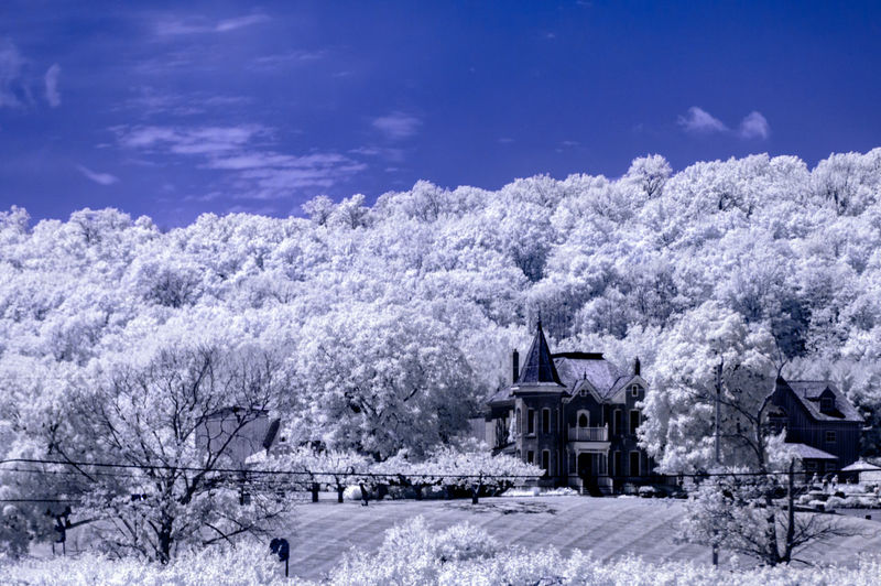 Infrared image of mansion amidst trees against blue sky