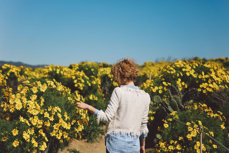 Rear view of woman standing on field by flowers against clear blue sky during sunny day