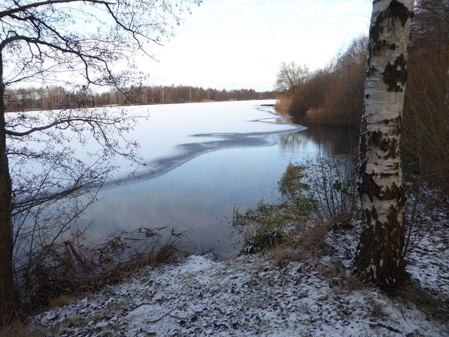 Birchtreelover Tranquility Beauty In Nature For My Friends 😍😘🎁 Brrrrrrrrr❄❄❄❄ Cold Temperature Frosty ⛄ Lazy Sunday ❤ White Lake🐧⛄ Tranquility Frozen Nature Naturelovers Lakesideview Wintertime ⛄ Waterfront Walking In The Snow Favorite Places Frozenlake Love That View No People Landscapelover Tranquil Scene Beauty In Nature Natural Beauty