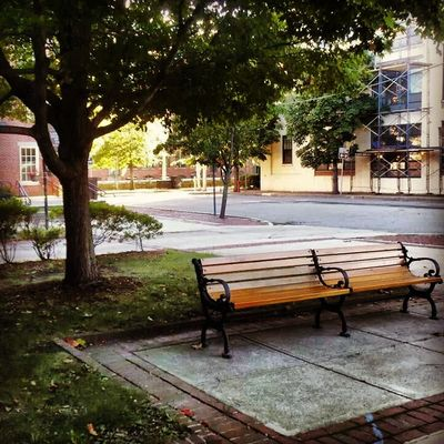 Lovely Park Benches