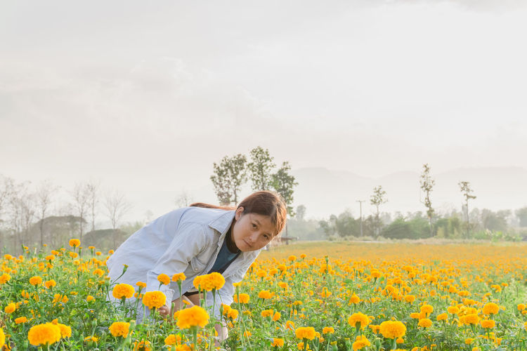 Marigold Garden Marigold Flower Marigold In Full Bloom. Flower Flowering Plant Growth Yellow Beauty In Nature Plant Field One Person Standing Freshness Nature Land Sky Landscape Environment Fragility Vulnerability  Day Rural Scene Casual Clothing Outdoors