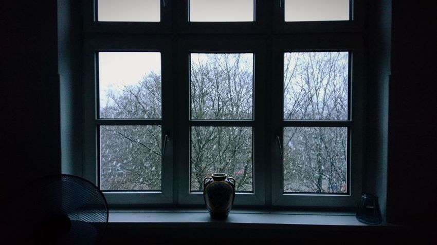 Winter day. Breakup Hamburg Germany Hh Barmbek Out Of The Window Window Windows Frame Framed Winter Wintertime Darkness Snow Tristesse Melancholy Melancholic Mystery Vase Politics And Government Silhouette Looking Through Window Winter Window Museum Rear View