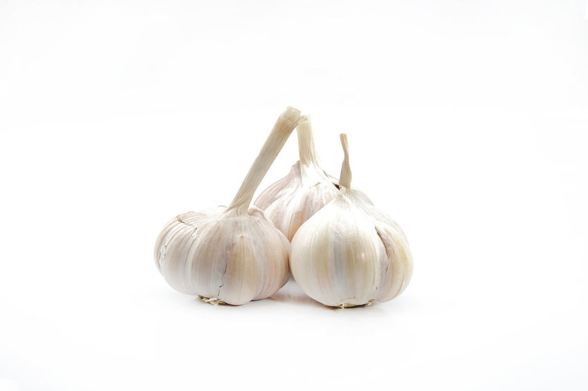 White inion in white isolated background Garlic Bawang Putih Close-up Copy Space Cut Out Food Food And Drink Freshness Healthy Eating Indoors  Ingredient No People Raw Food Raw Onion Spice Still Life Studio Shot Uncooked Vegetable Wellbeing White Background White Onion White Onions