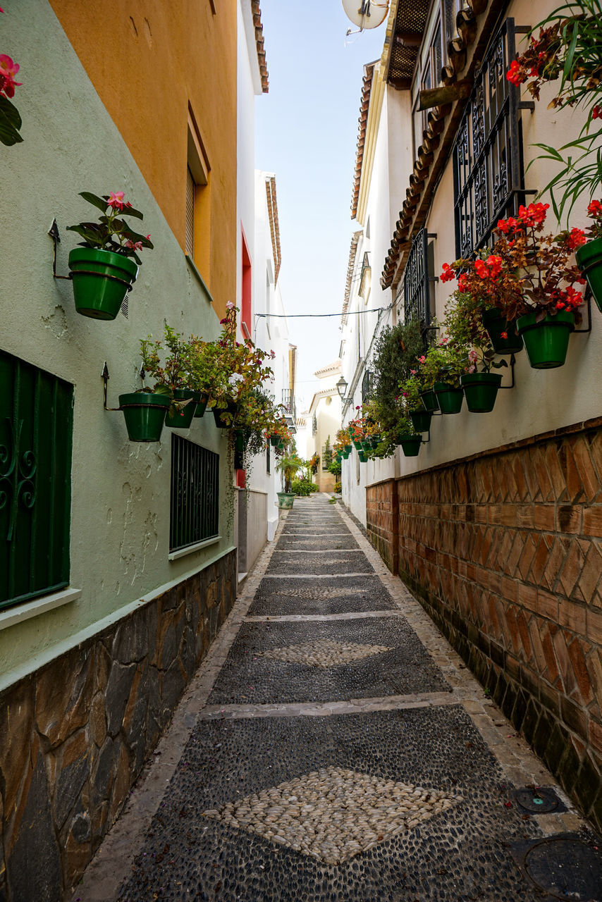 NARROW ALLEY AMIDST HOUSES AND BUILDINGS IN CITY