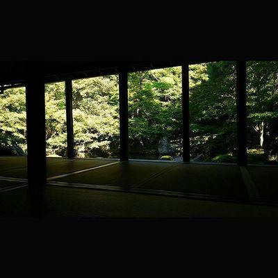 蓮華寺 2015.10.25 もう何も言うまい…。 これでも少し色が抜けてきたんだよ! 使い回しじゃねー笑 月一蓮華寺 蓮華寺 京都 Kyoto Temple Team_jp_ Japan Instagood 景色 Scenery 自然 Nature Icu_japan Ig_japan Ig_nihon Jp_gallery Japan_focus