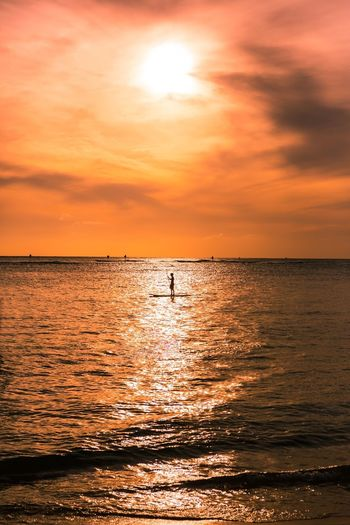 Man Stand Up Paddle Boarder Paddling On Ocean
