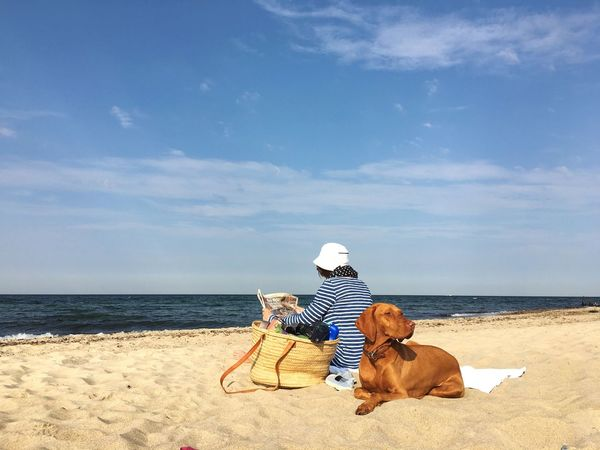 My Year My View Sea Beach Pets Sky Dog Water Domestic Animals One Animal Vacations Shore Sand Horizon Over Water Real People Pet Owner Outdoors Baltic Sea Kühlungsborn Relaxing Enjoying The Sun Enjoying Nature
