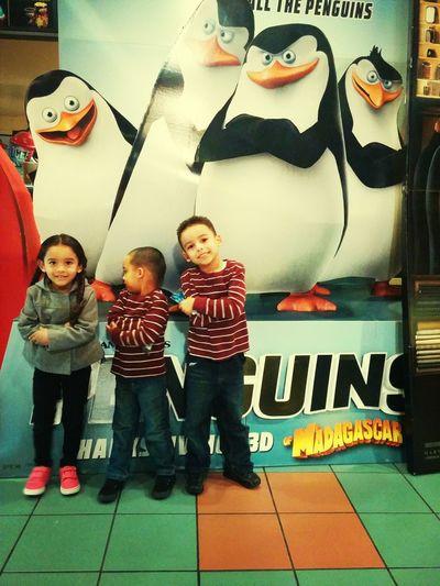 Penguins Movies