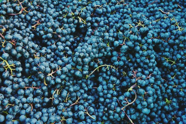 Foodpics Foodphotography Food Beauty In Nature Plant Freshness EyeEmNewHere Nature Outdoors Backgrounds Stack Large Group Of Objects Close-up No People Full Frame Blue Purple Wine Winemaking Wine Time Autuum Autuum Colors Berrys Thanksgiving