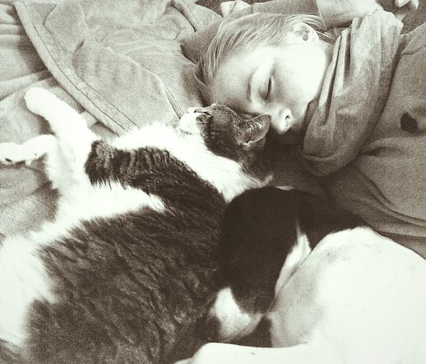RePicture Friendship Likecatsanddogs Sleepy Bestfriends ❤ Love Peace Harmony Photos That Will Restore Your Faith In Humanity Lovewithoutboundries DifferentBreed Catdoglove Love Without Boundaries