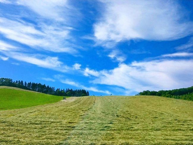 ここ電波📶届かないよ🙅 Cloud - Sky Nature Landscape Sky Beauty In Nature Scenics Outdoors No People Blue Grass Agriculture Rural Scene 田舎暮らし Rural Area Hokkaido,Japan 空 自然 Hokkaido Black_chica1707 EyeEmNewHere Landscape_photography Chica's Sky Rural Landscape EyeEm Selects Rural Scenes