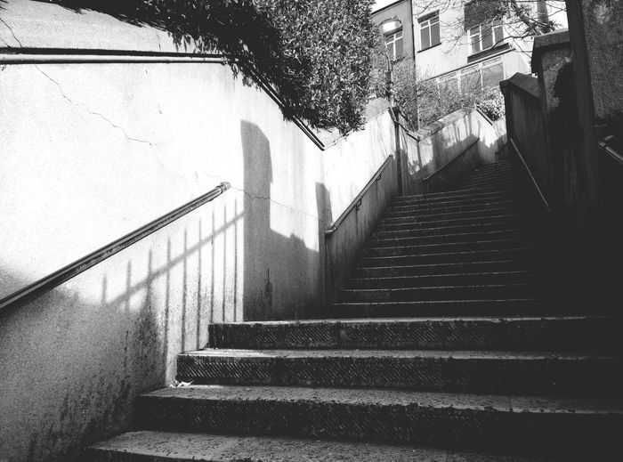 Shadows On The Wall Licht Und Schatten Stairs Treppe Spring Afternoon Afternoon Light Black & White Schwarzweiß